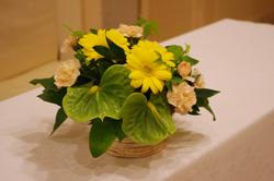 20100515flower1