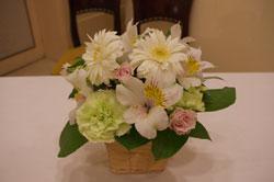 20091115flower1